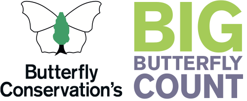Butterfly Conservation: Big Butterfly Count